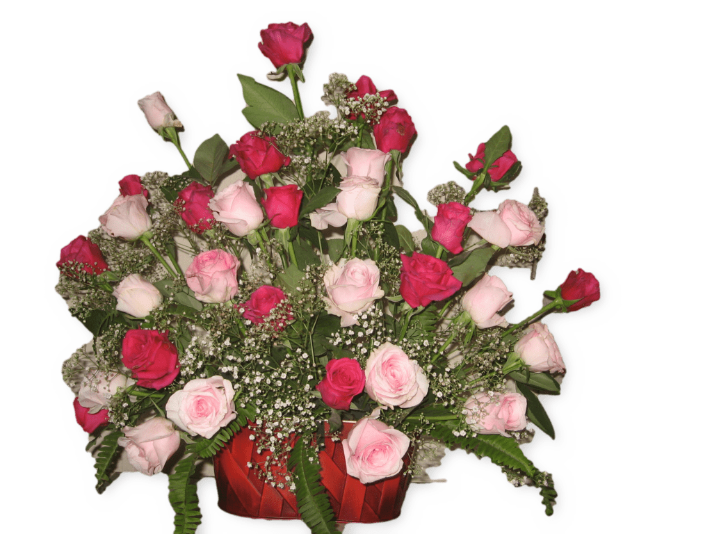 40-red-pink-roses